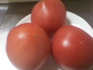 tomatoc0230267_2026162