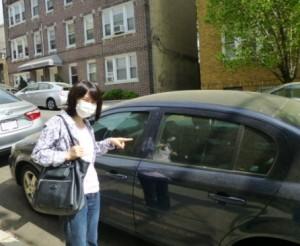 pollen car 0511